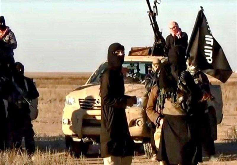 انتقال داعش به شمال آفریقا؛ گسترش فعالیت های گرگ های تنها